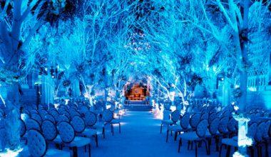 Prague Gala Lighting - Uplighting 1