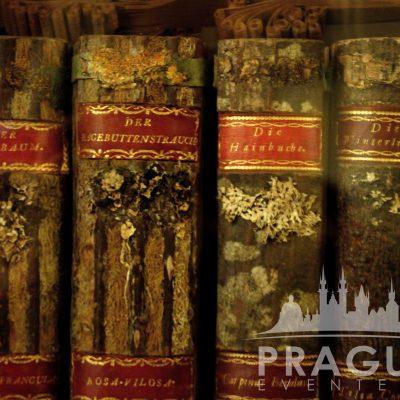 VIP Prague Tour - Strahov Monastery 7