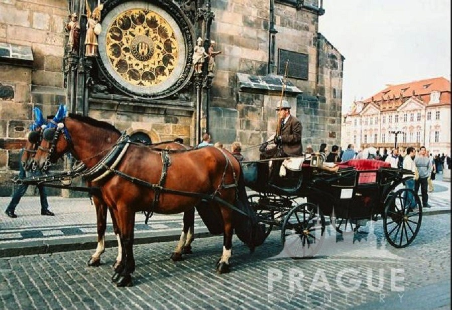 Group Prague Transportation - Horse Drawn Carriages 1
